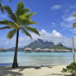 Dallas Morning News French Polynesia