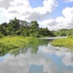 Sun Sentinel Panama Canal