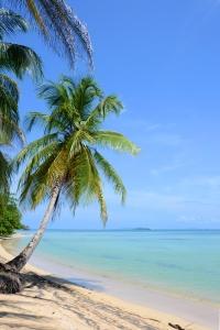Panama Punta Vieja