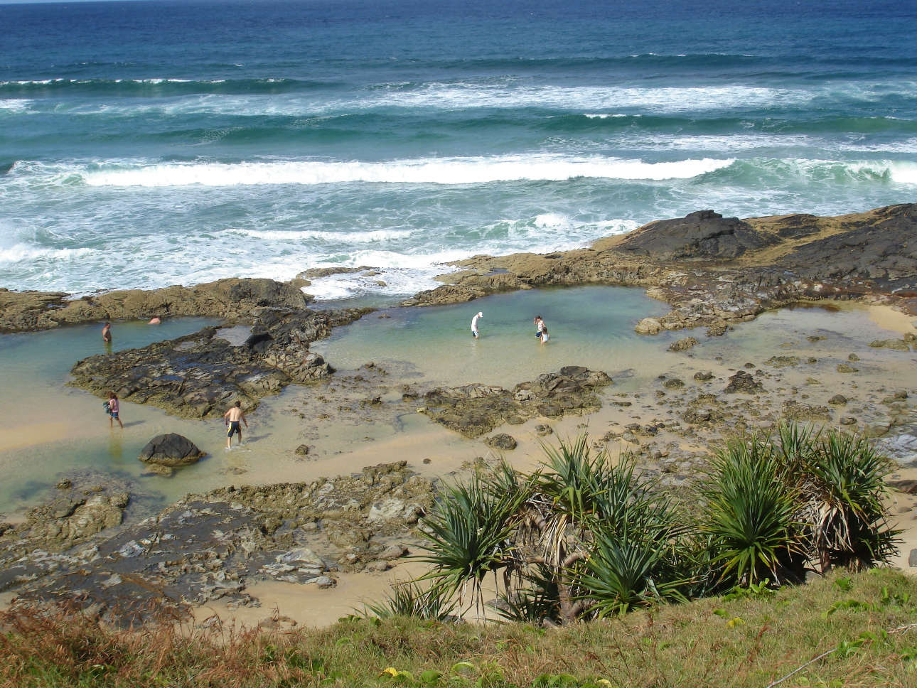 Champagne Pools on Fraser Island offer a chance for a protected swim