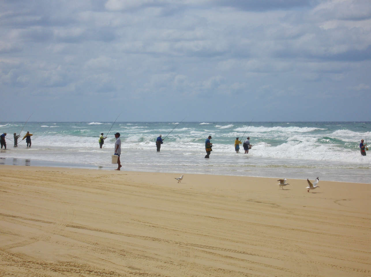 Fishermen during Tailor Run on Fraser Island
