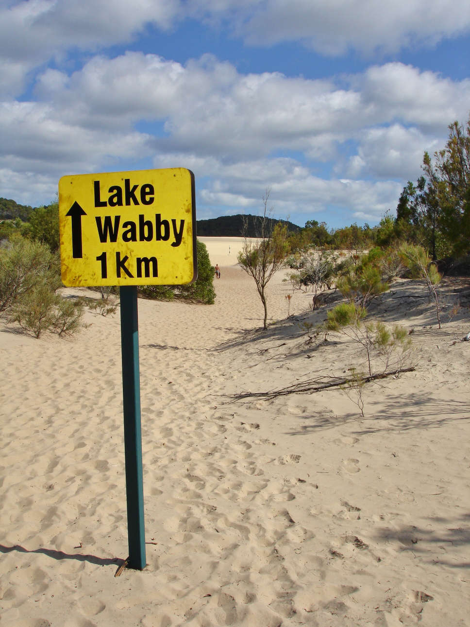 Walking to Fraser Island's Lake Wabby