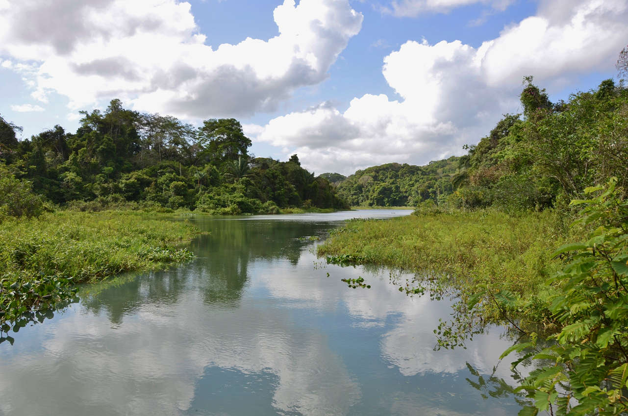 You would never believe that one of the world's busiest canals is just a stone's throw away when you are gliding along the countless river arms along Lake Gatun
