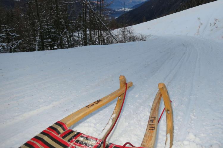 Elfer Mountain Sledding