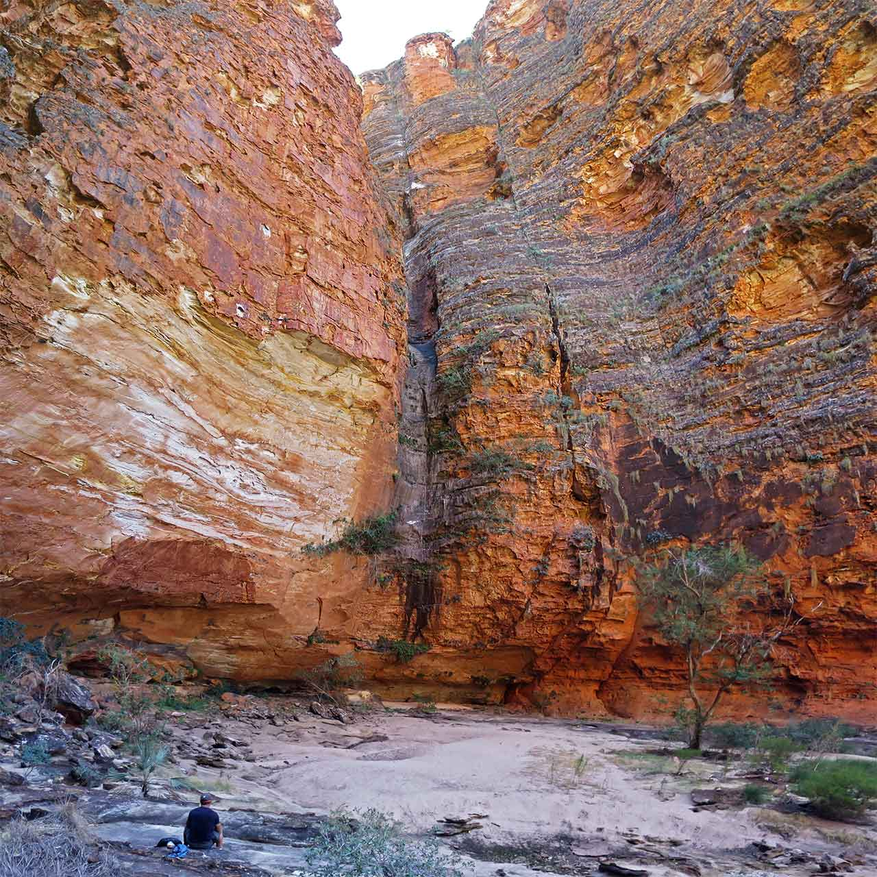 Australia Purnululu National Park Bungle Bungles Whip Snake Gorge