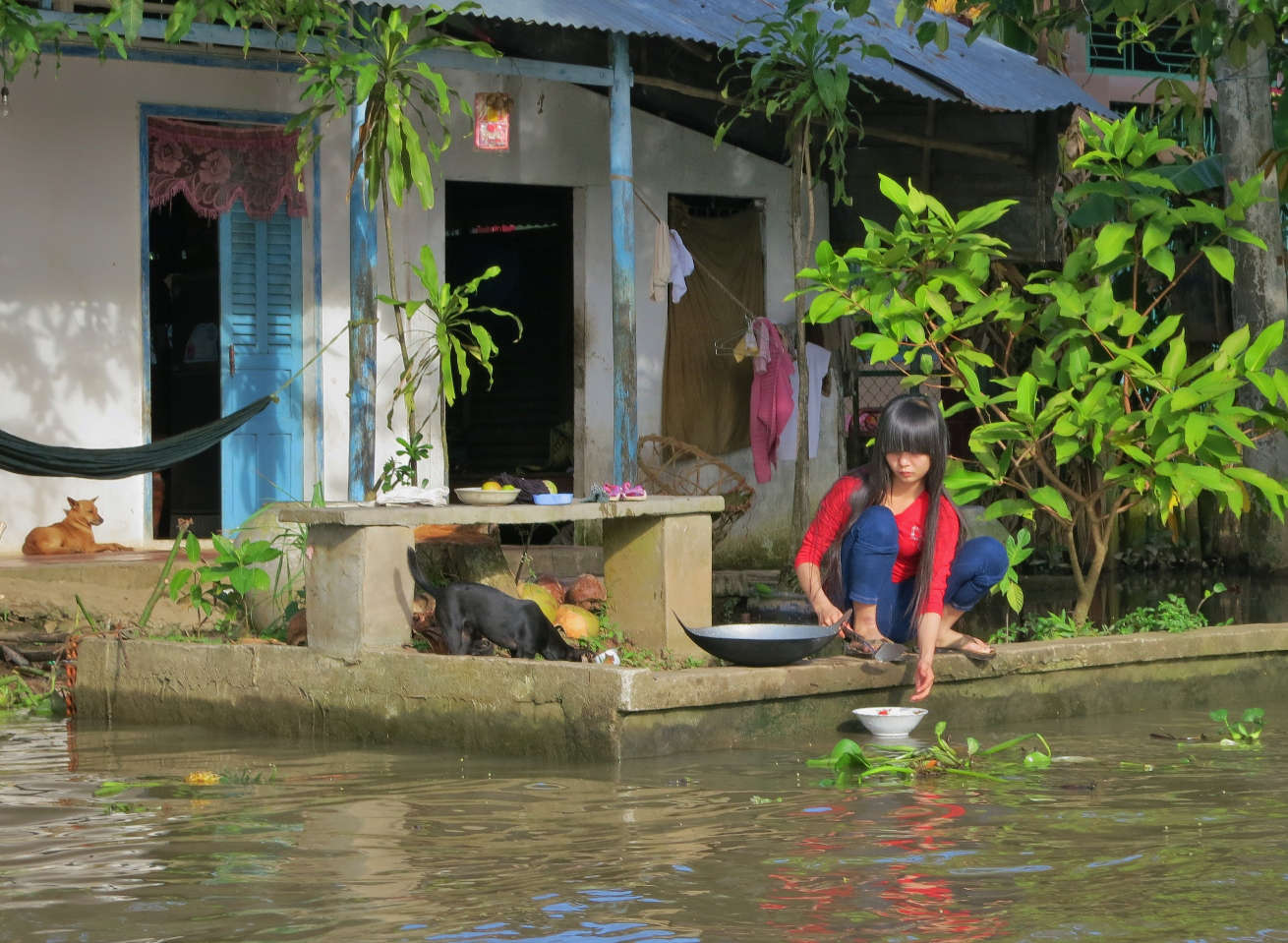 Life along the Mekong Canals