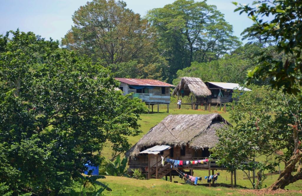 This indigenous settlement of Salt Creek on Isla Bastimentos lets you experience indigenous culture and craft. Guided tours can be taken to either explore the village or its surroundings.