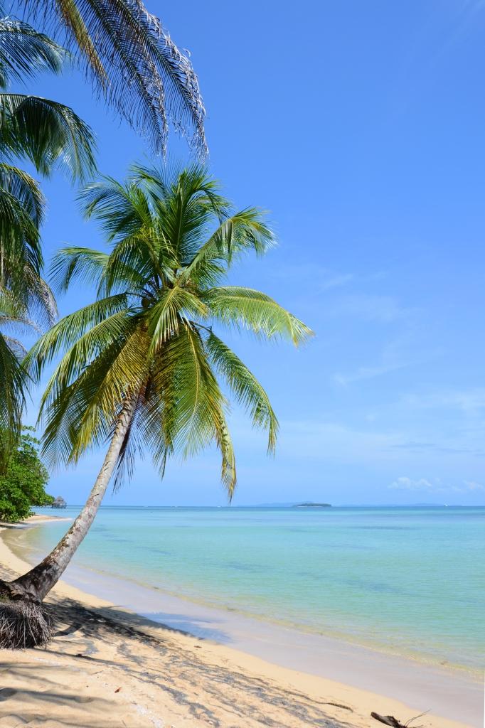 Punta Vieja on Isla Bastimentos