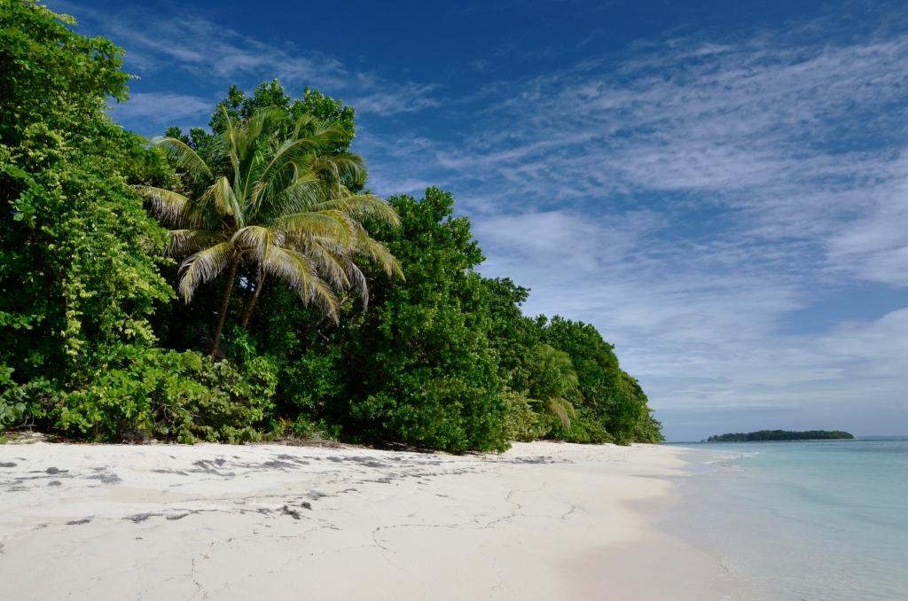 Zapatilla Island I