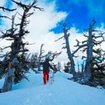 Oregon skiing Bend - Dallas Morning News