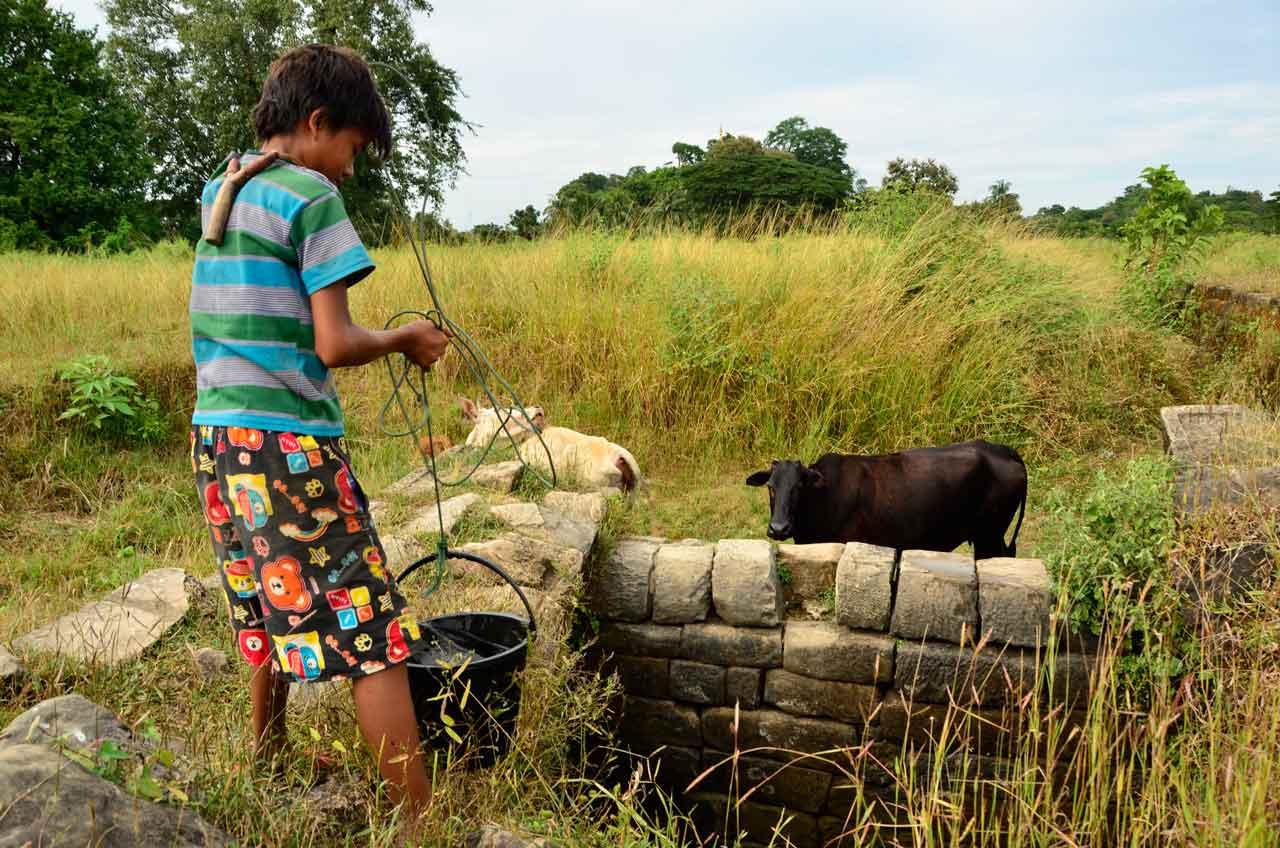 cowboy in Mrauk U, Myanmar