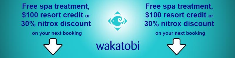 discount wakatobi sulawesi indonesia