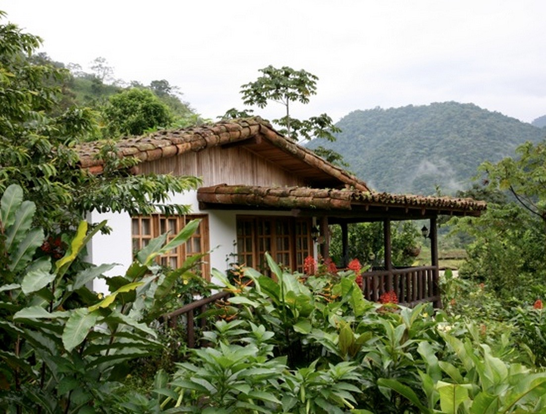 favorite eco-lodges of travel bloggers: Finca Luna Nuevo Lodge