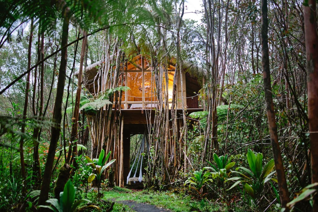 find unique airbnb accommodations treehouse