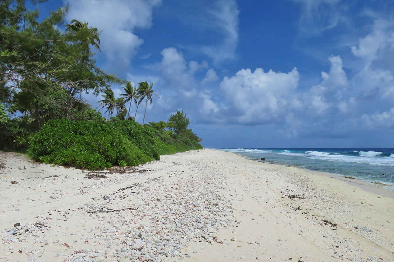 The beach at Pointe Manua in the North of Huahine is a heaven for beachcombers