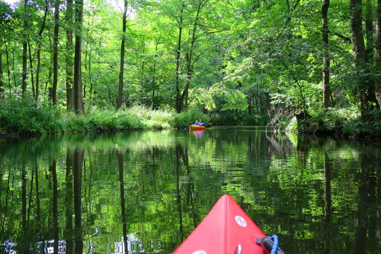 Despite its proximity to Berlin, the Spreewald is far from being an overrun tourist destination, and during the week you'll barely encounter anybody