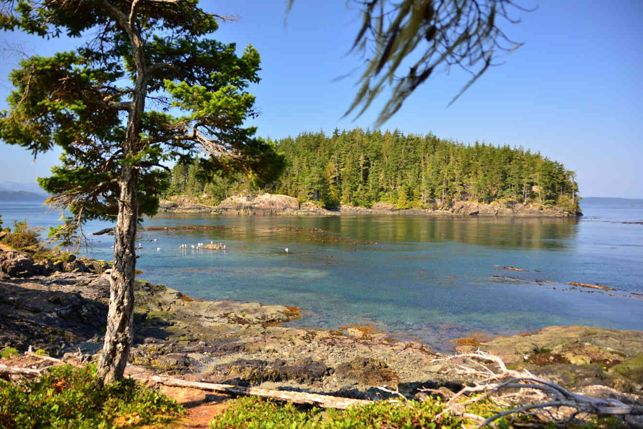 Kayaking Johnstone Strait Hanson Island