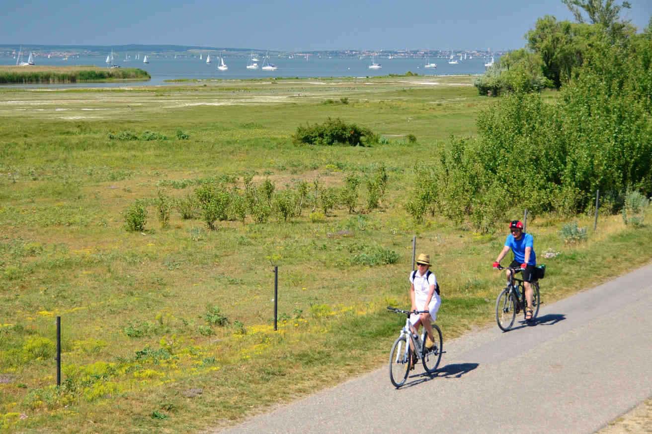 Bike paths circle Lake Neusiedl and bike ferries that take you across it make Lake Neusiedl a heaven for bikers of all levels