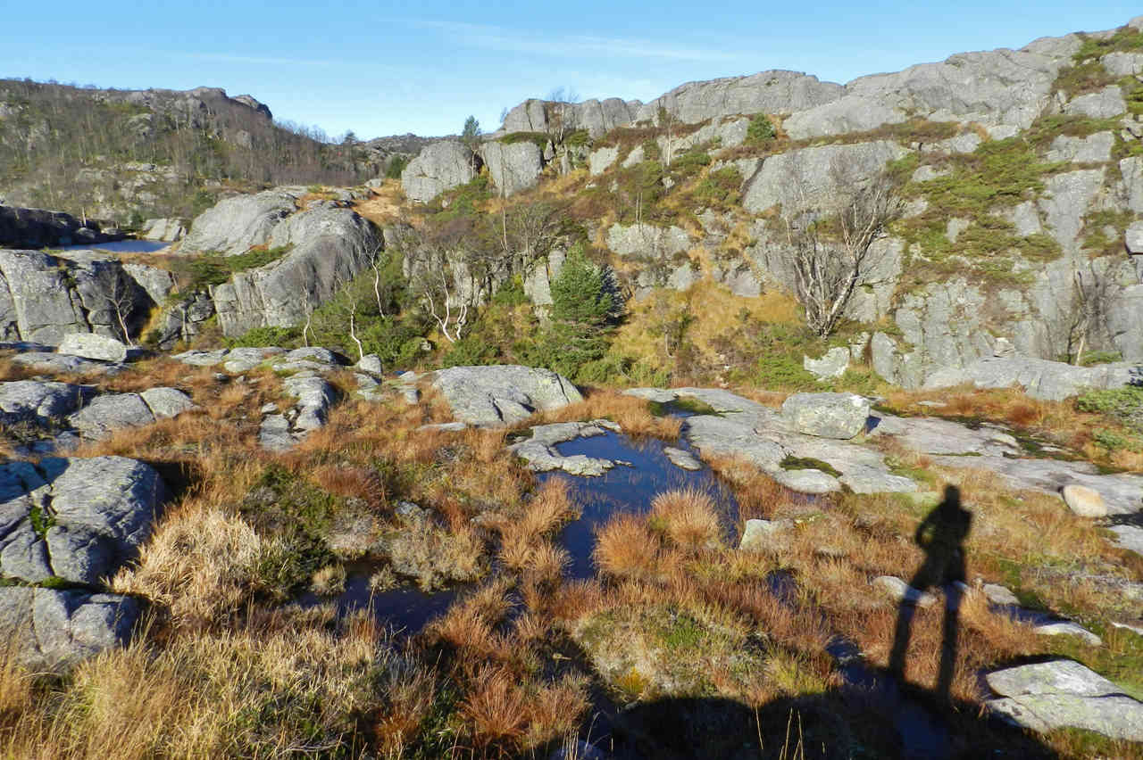 Before you reach Preikestolen, the trail goes across a high plateau with some moores