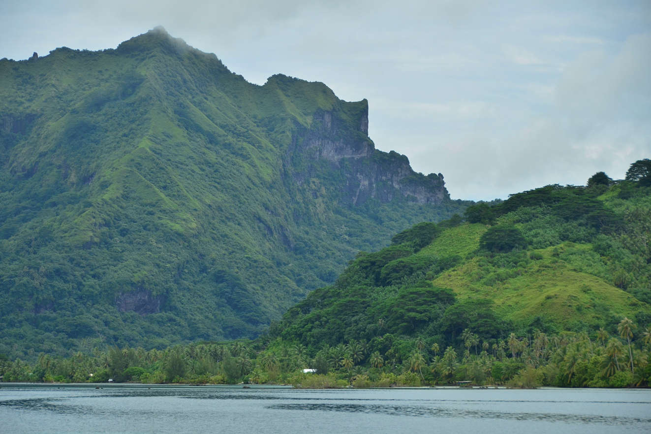 A steep, undeveloped interior awaits those daring to venture inland on Raiatea