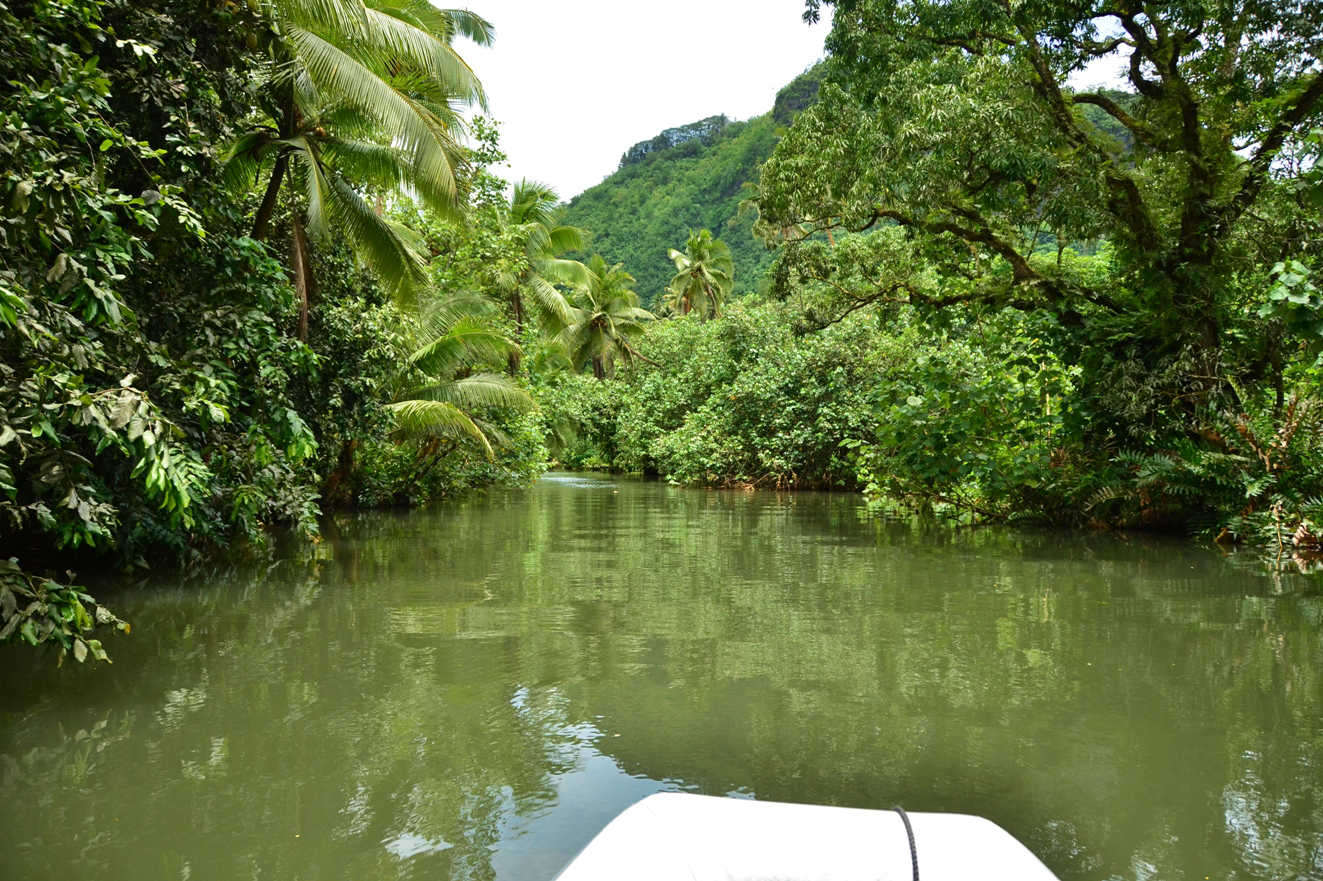 The mysterious and wonderful Faaroa River