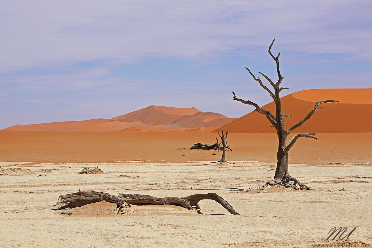 things you didn't know about Namibia dead trees desert deadvlei sossusvlei