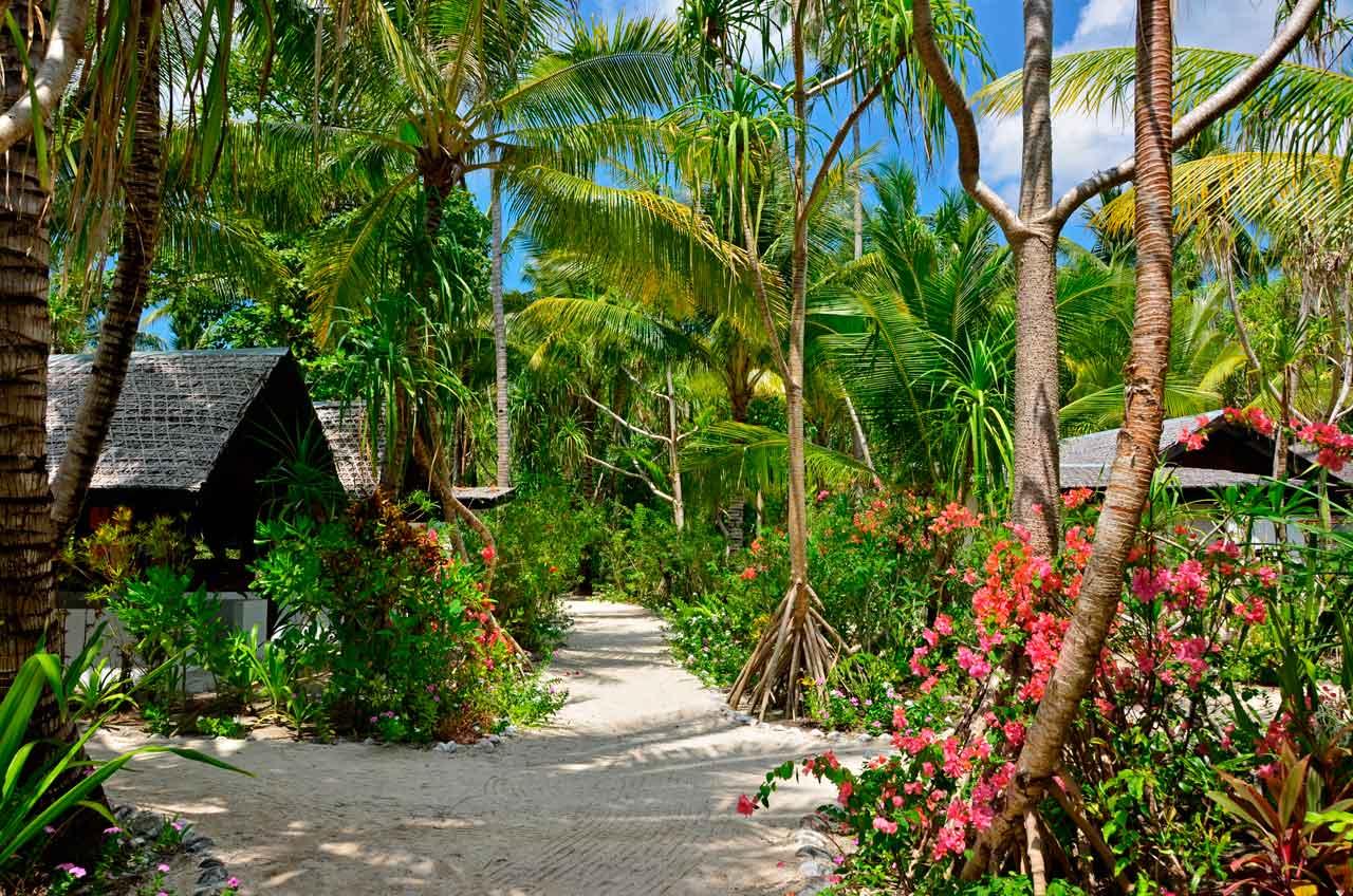 Wakatobi Dive Resort: gardens