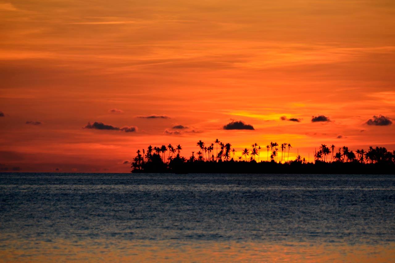 Wakatobi Dive Resort: sunset